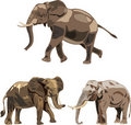 Free The World S Three Kinds Of Elephants Royalty Free Stock Images - 17690399