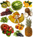 Free Fruits Stock Images - 17691834