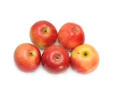 Free Red Apples Royalty Free Stock Photos - 17692088