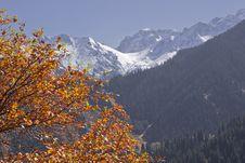 Free Autumn Mountain Stock Images - 17693094