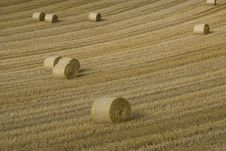 Free Stubble Field Stock Photography - 17695092