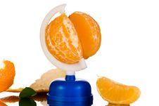 Free Globe From Peeled Tangerine And Clove Stock Photo - 17695630