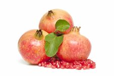 Ecological Pomegranate Stock Photography