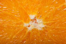Free Orange Royalty Free Stock Photo - 17696485