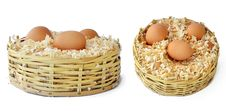 Free Eggs_01 Stock Image - 17698931