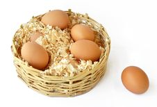 Free Eggs_011 Royalty Free Stock Photos - 17699338