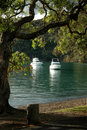 Free Tranquil Bay Royalty Free Stock Photography - 1770157