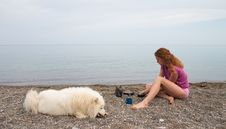Free Girl And Samoyed On The Seaside Stock Photo - 1778620