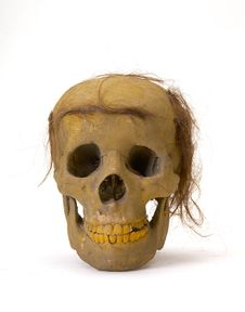 Free Skull Stock Image - 1779141