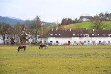 Free Village Field With Horses Royalty Free Stock Images - 1779689