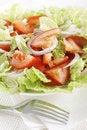 Free Fresh Vegetable Salad Royalty Free Stock Photo - 17700095