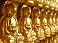 Free Row Of Small Golden Buddha Statue Stock Photos - 17705453