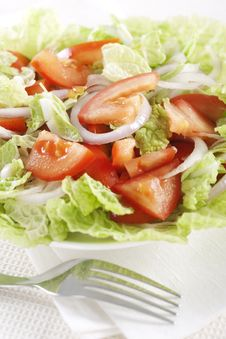 Free Fresh Vegetable Salad Royalty Free Stock Photo - 17700095