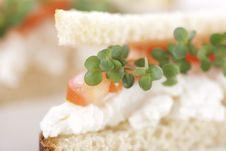 Free Vegetarian Sandwiches Royalty Free Stock Photo - 17700165