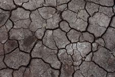 Free Cracked Soil Stock Images - 17700384