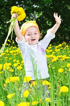 Girl In  Blossoming Field Royalty Free Stock Photos