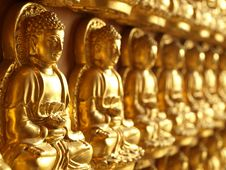 Row Of Small Golden Buddha Statue Stock Photos