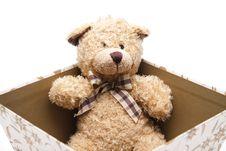 Free Plush Bear Royalty Free Stock Photos - 17709658