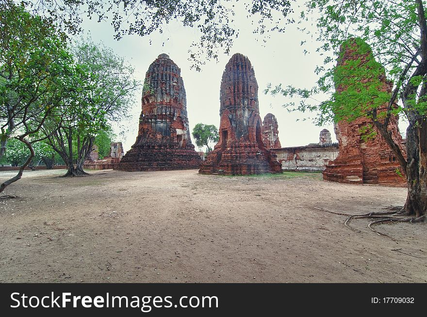 Ruins with trees from Ayutthaya