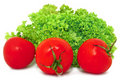 Free Red Tomatoes And Green Lettuce, Isolated On White Royalty Free Stock Images - 17713339
