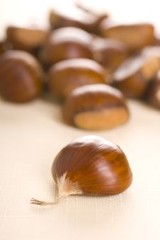 Free Chestnuts Royalty Free Stock Photo - 17711315