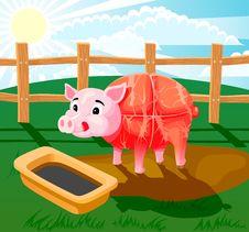 Free Pig Sausage Stock Photography - 17712372