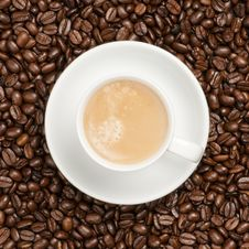 Free Cup With Coffee Royalty Free Stock Photos - 17713458