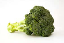 Fresh Sprouting Broccoli Stock Images