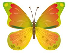 Butterfly Isolated.  EPS10 Vector Royalty Free Stock Image