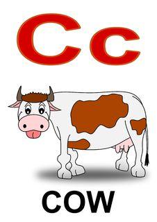 Free Letter  C Cow Stock Photos - 17714883