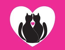Free Cats Stock Photo - 17715430