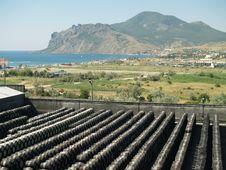 Free Wine Barrels Stock Photo - 17715500