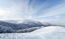 Free Frozen Forest And Meadows In Carpathians Panorama Stock Photography - 17717682