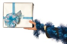 Free Present For Christmas Royalty Free Stock Photos - 17717718