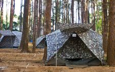 Free Tent  In The Forest Royalty Free Stock Images - 17718919