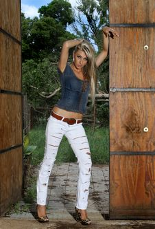 Free Blond In Stable Doors Royalty Free Stock Image - 17719096