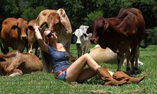 Free Blonde Cow Girl Sitting Between Heifers Stock Photo - 17719290