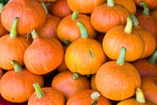 Free Pumpkins  On The Market Stock Image - 17721471