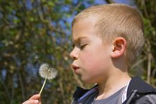 Free Six Year Old Boy Blowing A Dandelion Stock Photos - 17723193