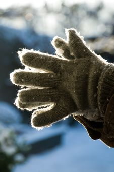 Free Grey Gloves With Snow In Afternoon Sunlight Stock Photos - 17724573