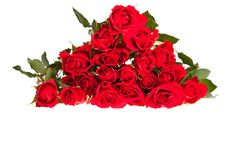 Free Red Roses On White Isolated Background Royalty Free Stock Photography - 17727327