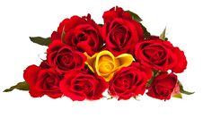 Free Valentine S Day Red Roses Isolated Stock Photography - 17727792