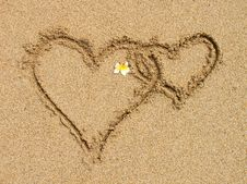 Free Love Stock Image - 17729131
