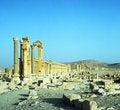Free Palmyra In Syria Royalty Free Stock Photos - 17732668
