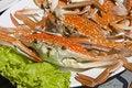Free Crab Stock Photos - 17735993