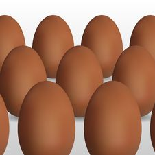 Free Vector Egg Royalty Free Stock Images - 17732709