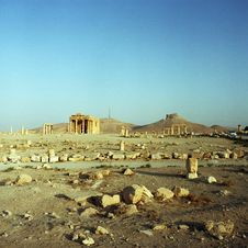 Free Palmyra In Syria Stock Photo - 17732710