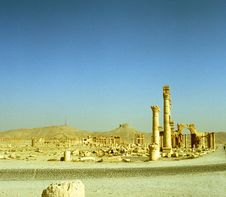 Free Palmyra In Syria Stock Photo - 17732790