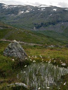 Free Norwegian Plato Royalty Free Stock Photo - 17736855