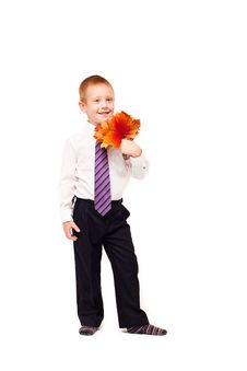 Free Boy   With Autumn Leaves Royalty Free Stock Photos - 17738068